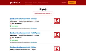 Brigady.prace.cz thumbnail