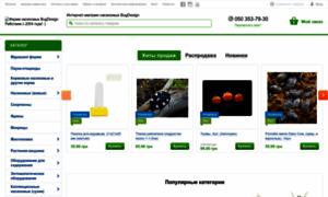 Bugdesign.com.ua thumbnail