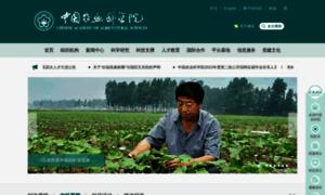 Caas.net.cn thumbnail