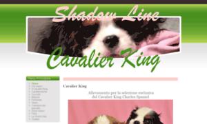 Cavalier.it thumbnail