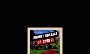 Einhell.pl thumbnail
