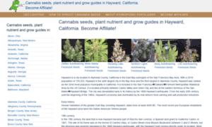 Haywardcannabis.tk thumbnail