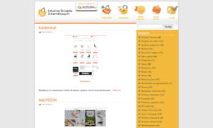Katalogsklepowinternetowych.pl thumbnail