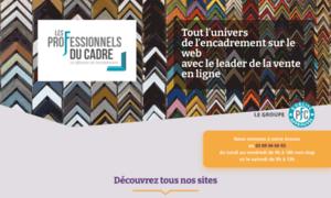 Les-professionnels-du-cadre.fr thumbnail