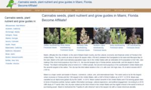 Miamicannabis.tk thumbnail
