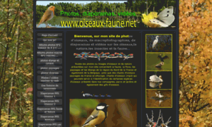 Oiseaux-faune.net thumbnail