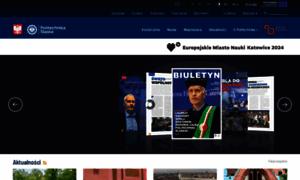 Polsl.pl thumbnail