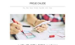 Projecalide.com thumbnail