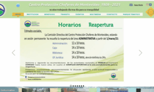 Proteccionchoferes.org.uy thumbnail