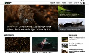 Roaring.earth thumbnail