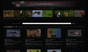 Wildlife-photos.net thumbnail