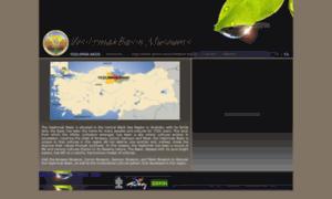 Yesilirmakbasinmuseums.org.tr thumbnail
