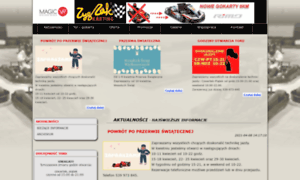 Zygzak-karting.pl thumbnail